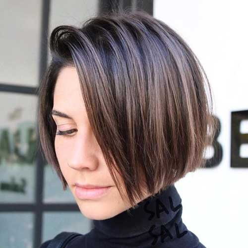 Dark Brown Shorthair Bob