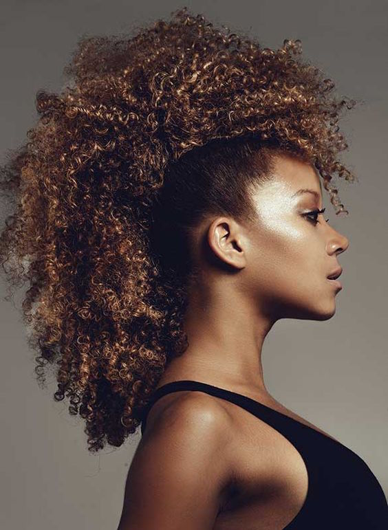 Afro hairstyles for African American